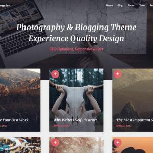 Szablon Wordpress PhotoBlogster